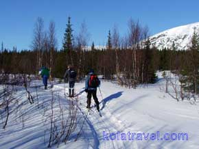 Cross country ski tour with luggage transport in mountains of Khibiny Tundra on Kola Peninsula.