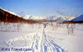 kolatravel cross-country skiing holidays Kola Peninsula luggage transport northern nature Russian Lapland ski trekking northwest Russia skiers groups back-country