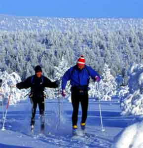 kolatravel,winter holidays,kola peninsula,russian lapland,polar circle,cross-country skiing,downhill skiing,snowmobile safaris,ice fishing,snow fun,snow walking,excursions,saami,lovozero,khibiny mountains,murmansk